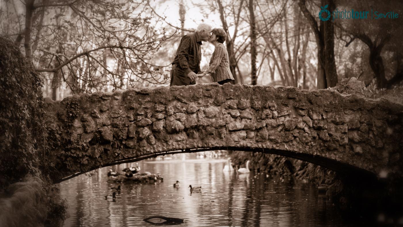 Photo of the bridge at Island of Birds