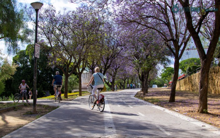 CYCLING AROUND SEVILLE: ROUTES THAT YOU CAN DO