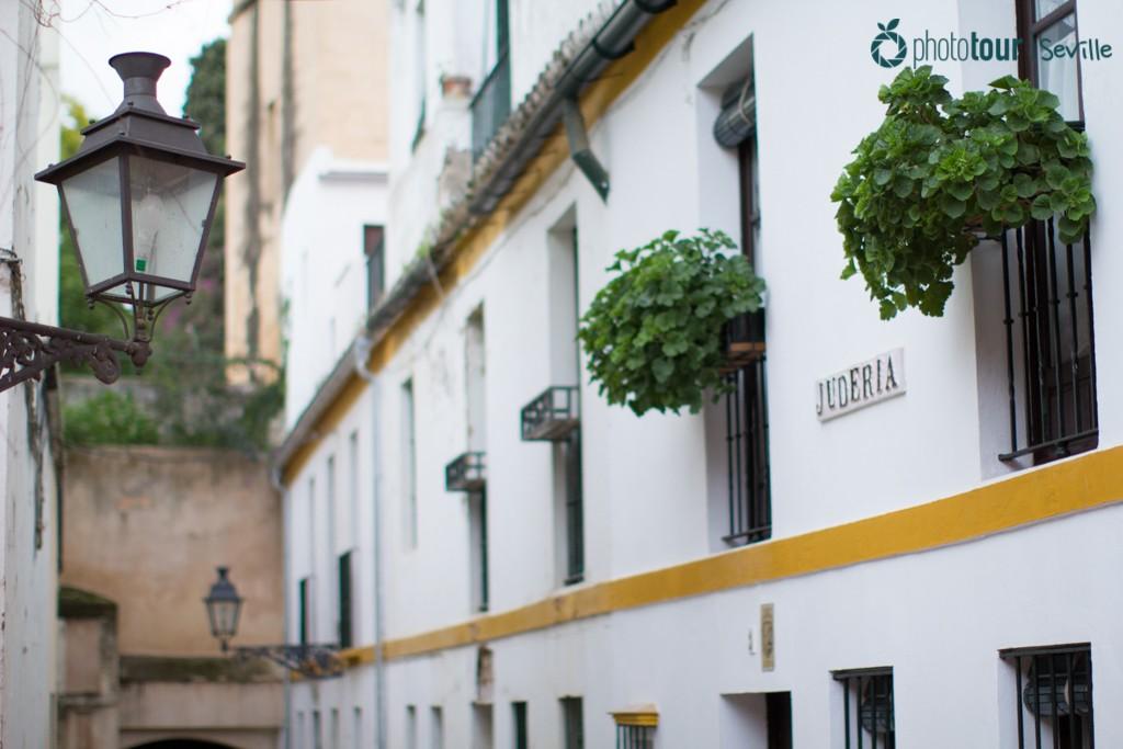 Santa Cruz in Seville