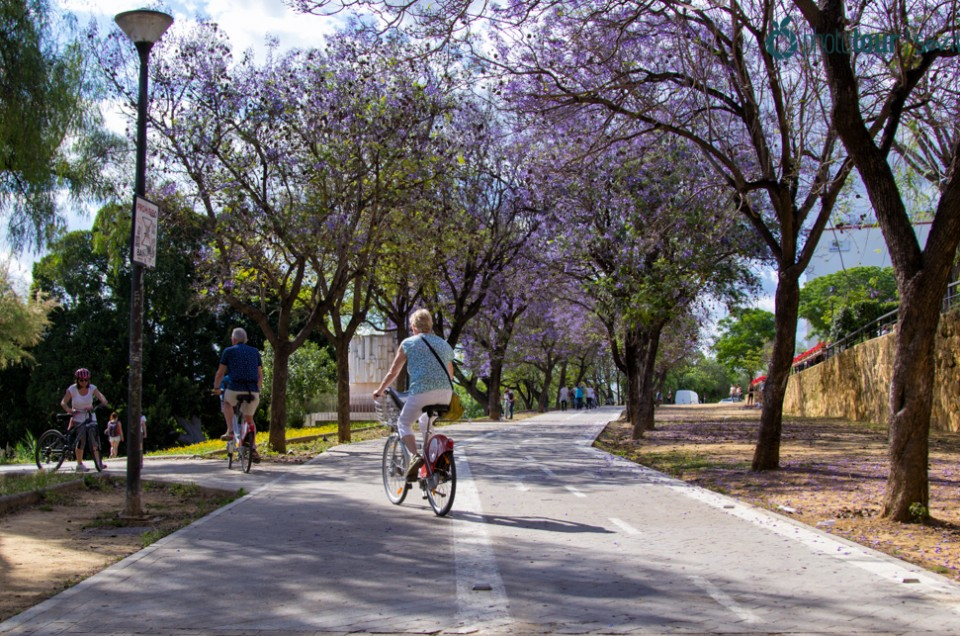 Visitar Sevilla en bicicleta: rutas que puedes hacer